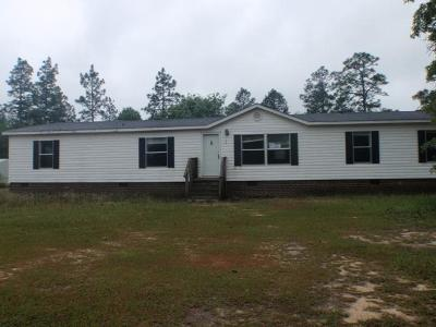 Aiken Single Family Home For Sale: 133 Pine Shadow Way