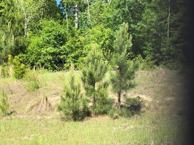 Augusta Residential Lots & Land For Sale: 3917 Carolyn Street
