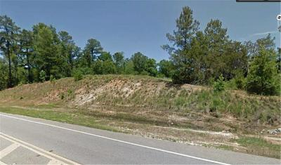 Grovetown Commercial For Sale: 2161 William Few Pkwy