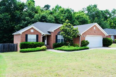 Grovetown Single Family Home For Sale: 817 Stoneview Drive