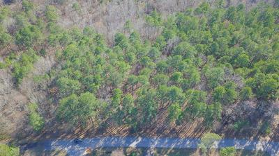 Lincoln County Residential Lots & Land For Sale: Lot 2 Bermuda Avenue