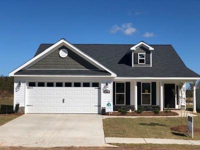 Aiken Single Family Home For Sale: 422 Lybrand Drive