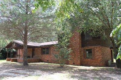 Columbia County Single Family Home For Sale: 3502 Ray Owens Road