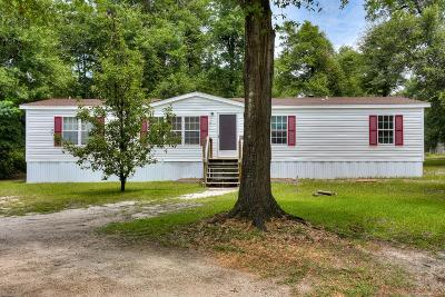 Richmond County Manufactured Home For Sale: 1435 Hephzibah McBean Road