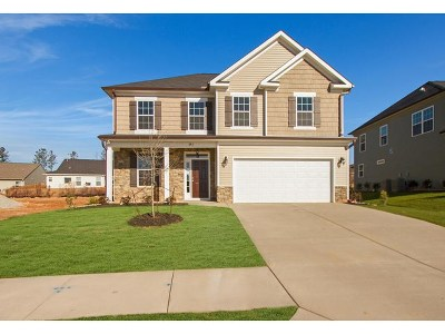 Grovetown Single Family Home For Sale: 847 Williford Run Drive