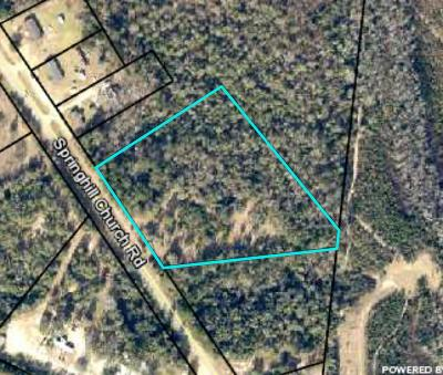 Hephzibah Residential Lots & Land For Sale: 029-028 Spring Hill