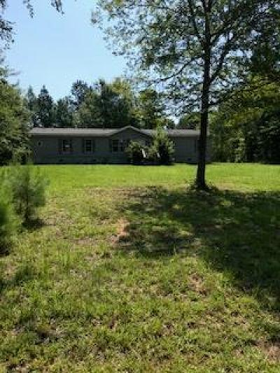 Thomson Single Family Home For Sale: 5402 Lincolnton Hwy