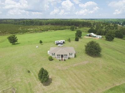 Edgefield County Single Family Home For Sale: 356 Holmes Pond Road