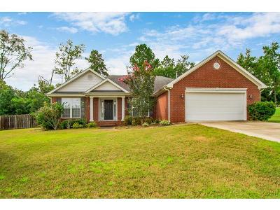 Augusta Single Family Home For Sale: 3204 Riverstone Drive