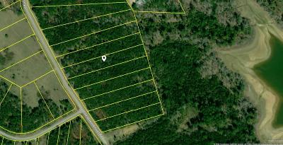 Lincolnton Residential Lots & Land For Sale: 1048 Clint Williams Road