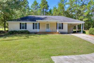 North Augusta Single Family Home For Sale: 691 Sudlow Lake Road