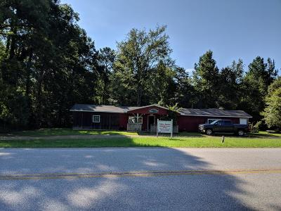 Thomson Commercial For Sale: 5770 Lincolnton Hwy