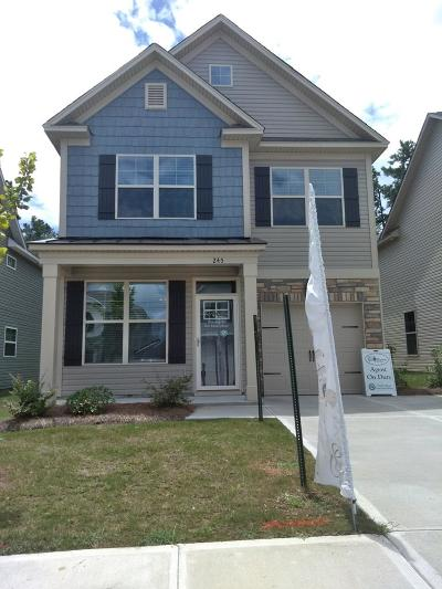Grovetown Single Family Home For Sale: 245 Claudia Drive