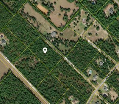 Aiken Residential Lots & Land For Sale: Lot 29 Affirmed Lane