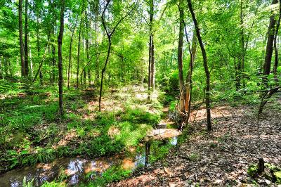 Edgefield County Residential Lots & Land For Sale: 34 Mealing Drive