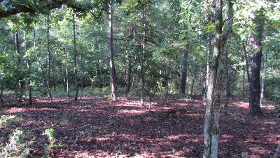 McCormick SC Residential Lots & Land For Sale: $3,500