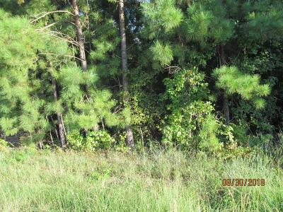 Lincoln County Residential Lots & Land For Sale: 9999 Hwy 378e