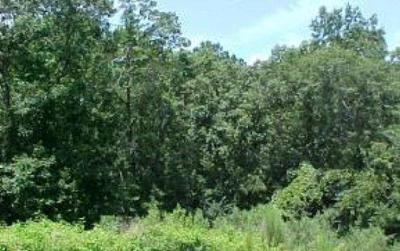 Martinez Residential Lots & Land For Sale: 433 Congressional Court