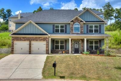 Aiken Single Family Home For Sale: 166 Hodges Bay Drive