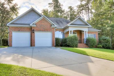 Aiken Single Family Home For Sale: 166 E Pleasant Colony