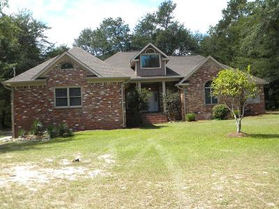 Augusta Single Family Home For Sale: 4843 Mike Padgett Hwy