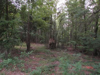 Lincoln County Residential Lots & Land For Sale: Maxim Road