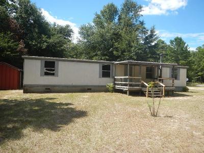 Hephzibah Single Family Home For Sale: 1439 Hephzibah McBean Road