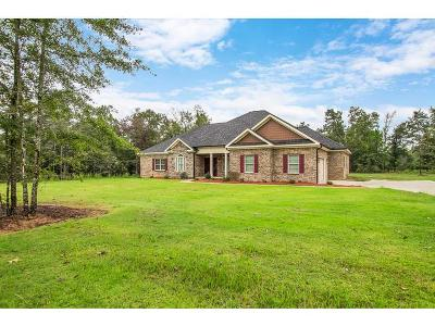 Hephzibah Single Family Home For Sale: 3466 Walker Creek