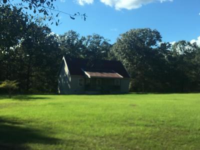 Edgefield County Single Family Home For Sale: 1473 Luke Bridge Road