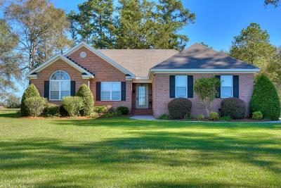 Lincolnton Single Family Home For Sale: 4790 Double Branches Road