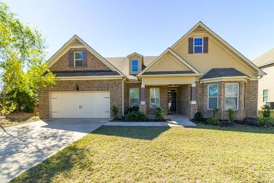 Grovetown Single Family Home For Sale: 704 Burch Creek Drive