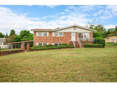 North Augusta Single Family Home For Sale: 221 Ambassador Drive