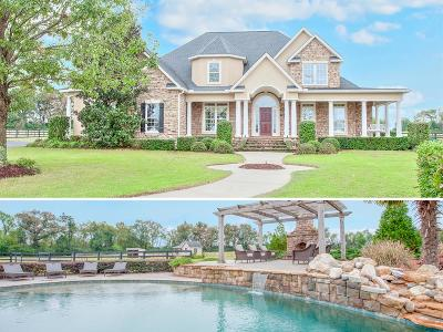 Single Family Home For Sale: 17236 Atomic Road