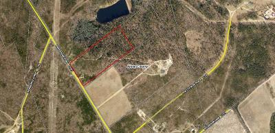 Aiken Residential Lots & Land For Sale: 16 Ac Snipes Pond Road