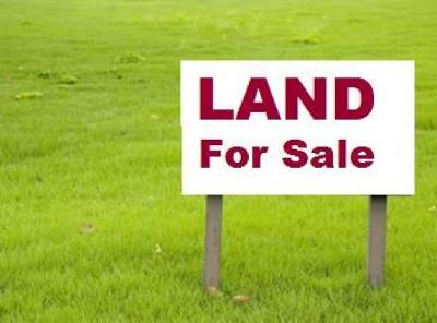 Hephzibah Residential Lots & Land For Sale: 4185 Bath Edie Road