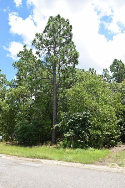 Aiken Residential Lots & Land For Sale: 317 Steeplechase Road