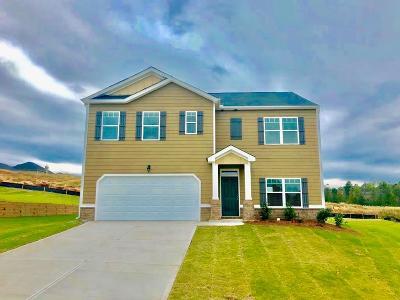 Grovetown Single Family Home For Sale: 1205 Eldrick Lane