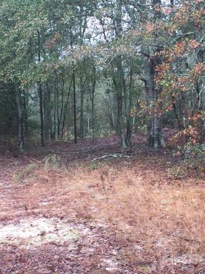 Edgefield County Residential Lots & Land For Sale: 181 Nicholson Road