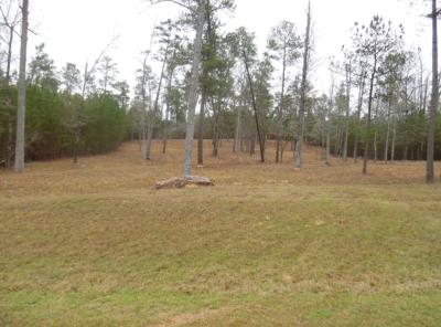 Lincolnton Residential Lots & Land For Sale: 5b Savannah Bay Drive