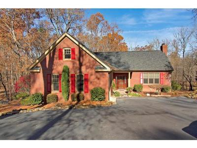 Lincolnton Single Family Home For Sale: 1023 Plantation Place Drive