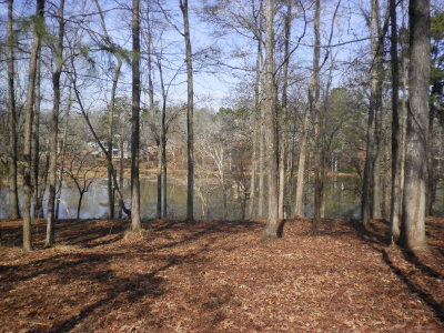 Evans Residential Lots & Land For Sale: 1592 River Island Pkwy