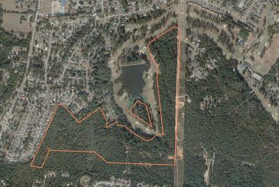 Residential Lots & Land For Sale: 4081 Goshen Lake Drive