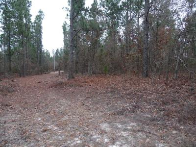 Richmond County Residential Lots & Land For Sale: 4467 Etterlee Road