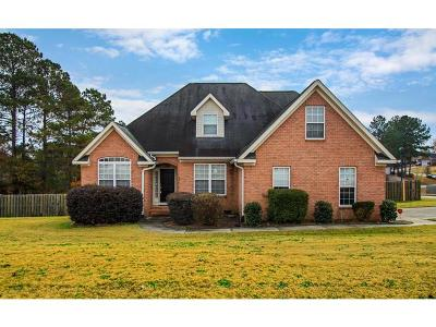 Grovetown Single Family Home For Sale: 2041 Silver Run Falls