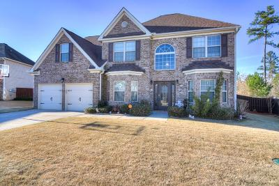Augusta Single Family Home For Sale: 2061 Willhaven Drive