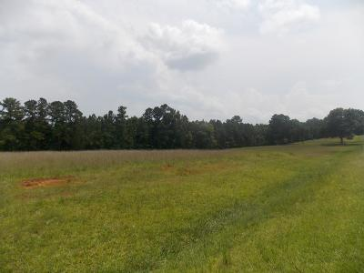 Lincolnton Residential Lots & Land For Sale: 8 C E Norman Road