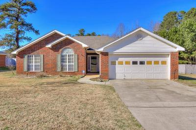 Grovetown Single Family Home For Sale: 341 Washington Street