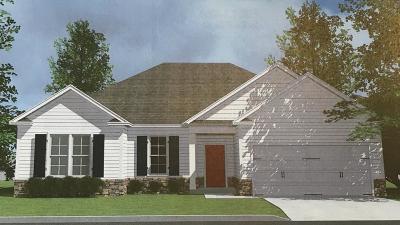 Grovetown Single Family Home For Sale: 6005 Settlement Court
