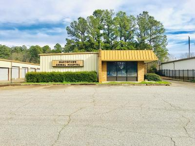 North Augusta Commercial For Sale: 1807 Knox Avenue
