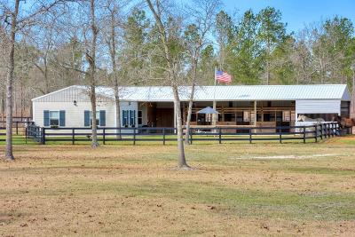 Aiken Single Family Home For Sale: 2080 Tally Ho Drive